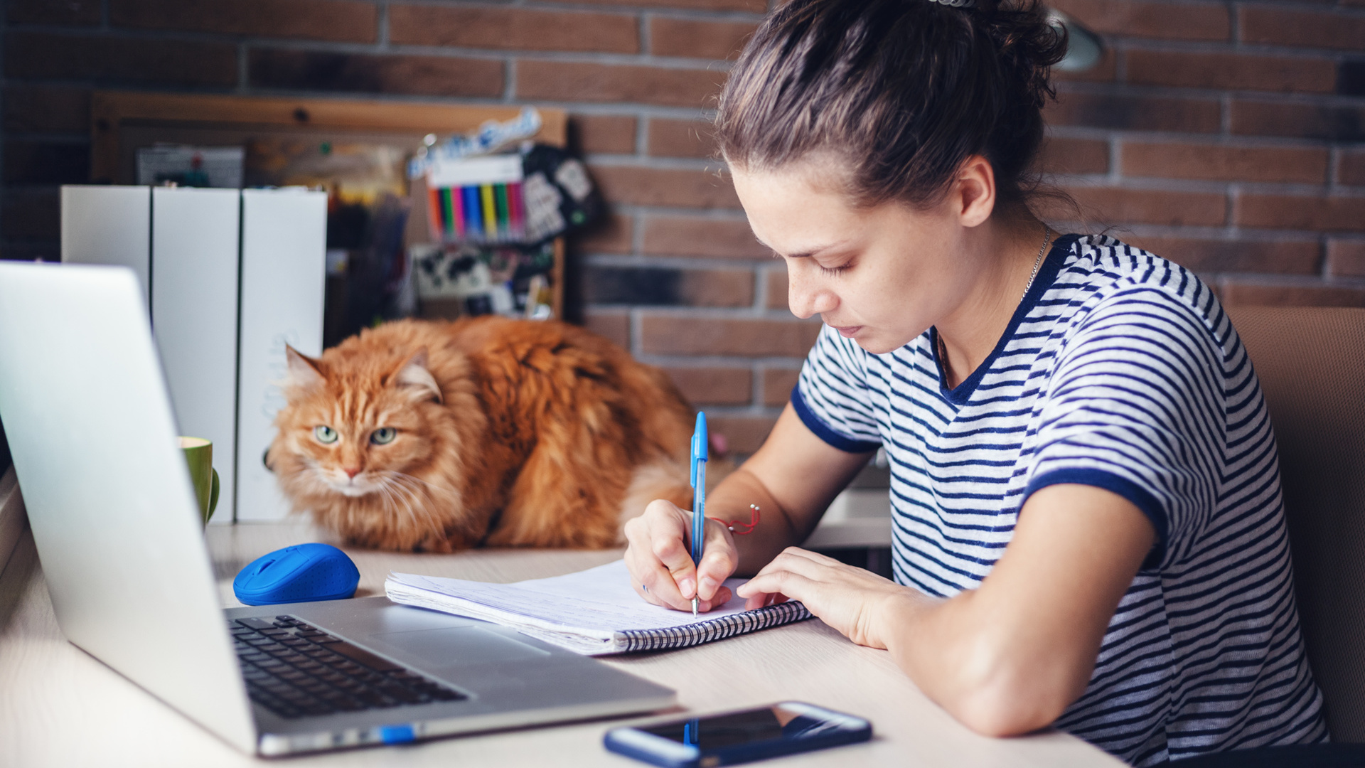 2018 Study Guide to a Successful Final Exam Preparation